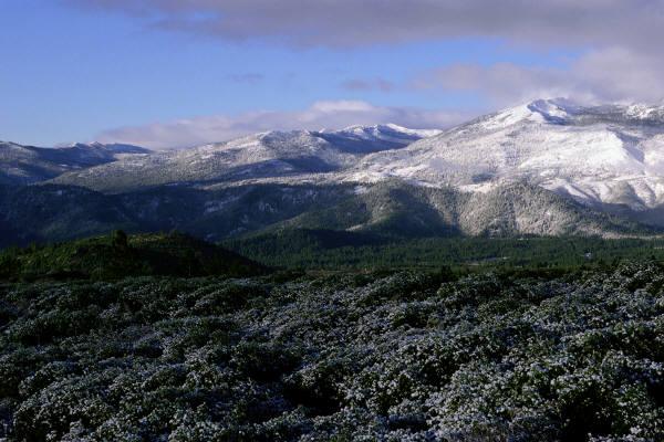 Arctic Tundra Blue Planet.html | Autos Post